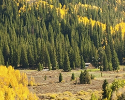 Fall Hikes in Summit County