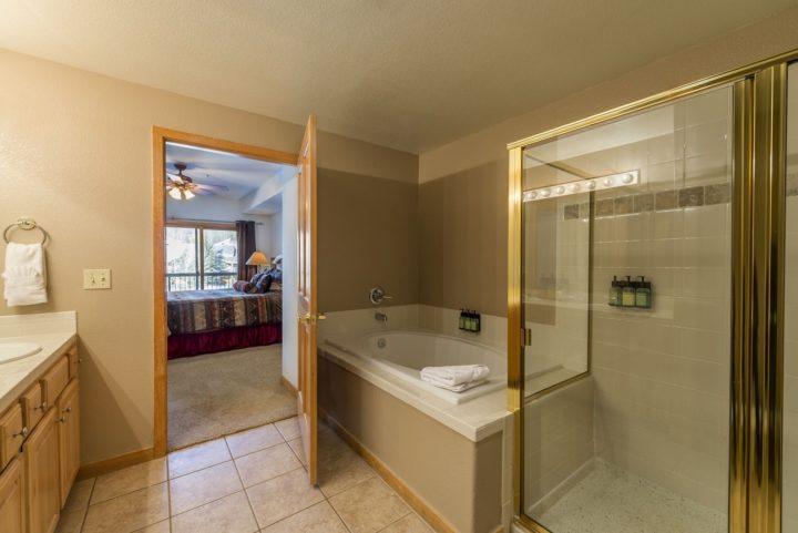 Master Bath (tub and walk-in shower)