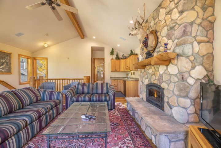 Family Room--private Bath (5th), stone fireplace, vaulted ceiling, TV/DVD, wet bar.