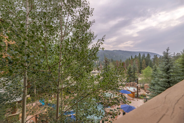 View from balcony--shaded by aspens in summer and open ski run view in winter.